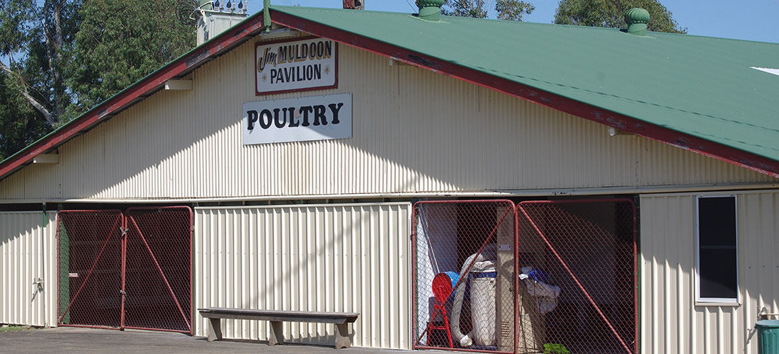 lismore poultry club slider 3